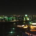 写真: 名古屋港シートレインランド:大観覧車から見た夜景 - 08