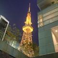 写真: Blossa(ブロッサ)から見上げた夜の名古屋テレビ塔 - 3