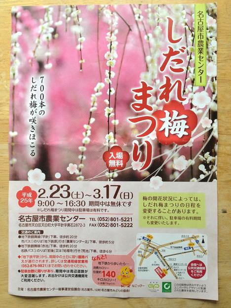 名古屋市農業センター:しだれ梅まつり - 140