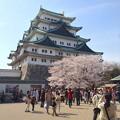 写真: 名古屋城春まつり - 060