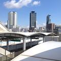 写真: ささしまライブ駅の屋根越しに見た名駅ビル群 - 2