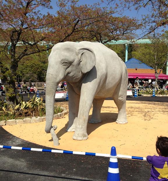 東山動植物園:新アジアゾウ舎前に設置された象の像 - 3