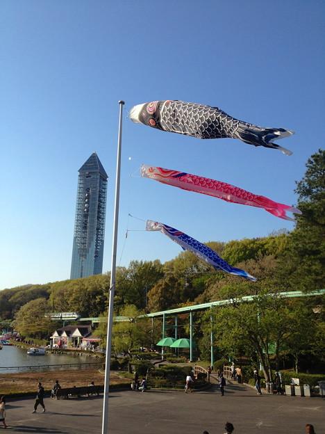 東山動植物園:上池前門 前の鯉のぼり - 7