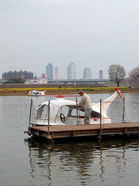 写真: 庄内緑地公園 - 053:ボート池から見た名駅ビル群