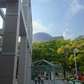 Photos: 名古屋市美術館から見た名古屋市科学館ブラザーアースの頭頂部 - 4