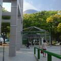 Photos: 名古屋市美術館から見た名古屋市科学館ブラザーアースの頭頂部 - 5