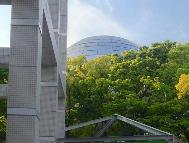 Photos: 名古屋市美術館から見た名古屋市科学館ブラザーアースの頭頂部 - 6