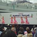 写真: 名古屋ハワイフェスティバル 2013:オアシス21 - 13