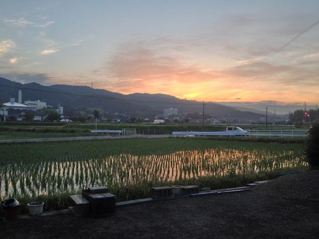 綺麗な朝焼けと田植えが済んだばかりの田んぼ - 1