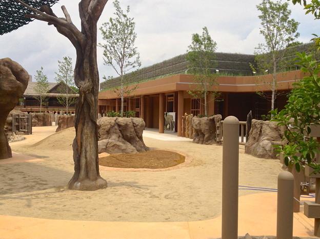 完成間近の新アジアゾウ舎 - 5