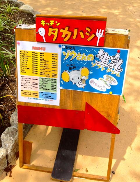 新アジアゾウ舎前の売店の「ゾウさんの生乳ソフトクリーム」 - 1
