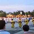写真: 名古屋みなと祭 2013:総踊り - 08