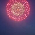 写真: 名古屋みなと祭 2013:花火大会 - 01