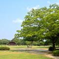 写真: 非常に暑い夏の日の桃花台中央公園 - 4
