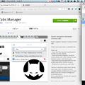 写真: Opera Developer 17:Tabman Tabs Managerでウィンドウパネルを実現? - 1