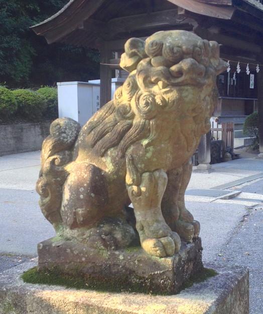 内々神社:狛犬 - 2