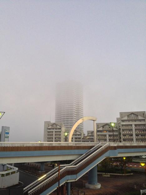 早朝、霧に包まれる桃花台ニュータウン - 1