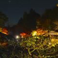 写真: 東山植物園 紅葉ライトアップ 2013 No - 093