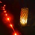 写真: 東山植物園 紅葉ライトアップ 2013 No - 109:案内用の赤いライトと灯籠
