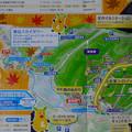 写真: 東山動植物園 紅葉ライトアップ 2013 No - 127:パンフレットの案内図