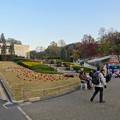 写真: 東山動植物園 No - 126:ガーデンテラス東山前に集まるキッチンカー