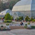 写真: 東山動植物園 No - 130:温室前のフラワーステージ