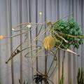 写真: 植物会館:緑の中の彫刻展 - 08