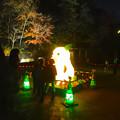 写真: 東山植物園 紅葉ライトアップ 2013 最終日 No - 01:星が丘門前のズーボのイルミネーション前で写真を撮る人々