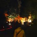 写真: 東山植物園 紅葉ライトアップ 2013 最終日 No - 04