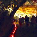 写真: 東山植物園 紅葉ライトアップ 2013 最終日 No - 24