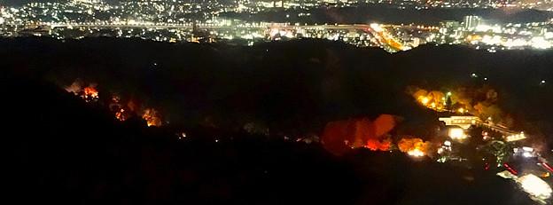 写真: 東山スカイタワーから見た夜景 No - 40:紅葉ライトアップ中の東山植物園