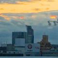 写真: 名古屋高速から見た名駅ビル群 No - 07