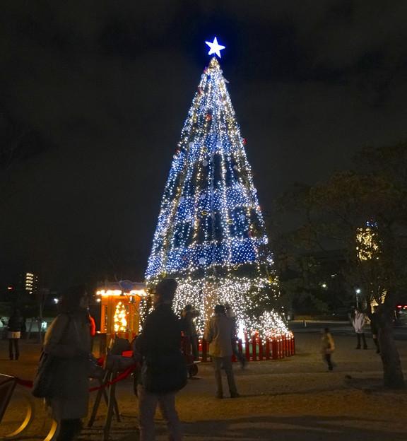写真: ノリタケの森のクリスマスイルミネーション 2013 No - 18