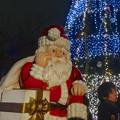 写真: ノリタケの森のクリスマスイルミネーション 2013 No - 36:サンタとツリー