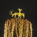 写真: ノリタケの森のクリスマスイルミネーション 2013 No - 39:トナカイのイルミネーション