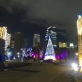 写真: ノリタケの森のクリスマスイルミネーション 2013 No - 55