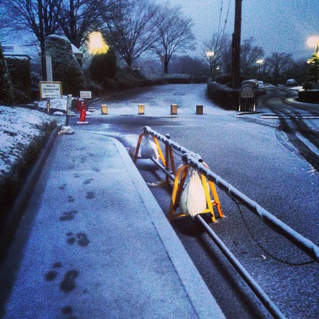 薄っすらと道路に積もった雪、そして足跡 - 06