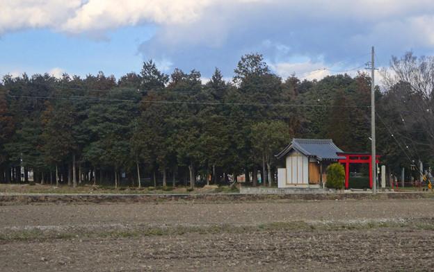 田んぼの中にポツンと浮かぶ、青塚前神明社 - 5