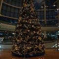 Photos: クリスマス・イルミ2013_10