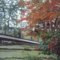 Photos: 圓藏寺奥の院途中風景