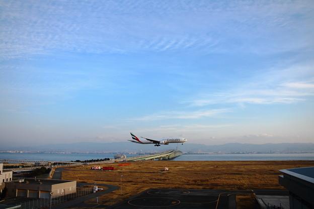 Photos: 関空(エミレーツ航空A310-308(F))_165