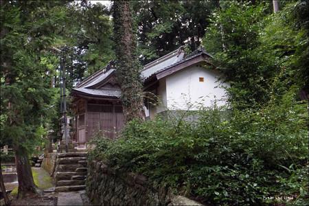 三宝荒神社から本社方向を見る2