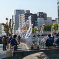 Photos: 鯉のぼり準備中?(マチ★アソビ)