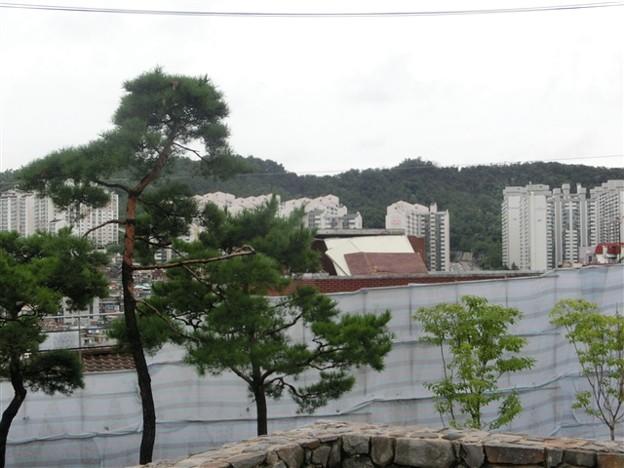 写真: ソウル230_R