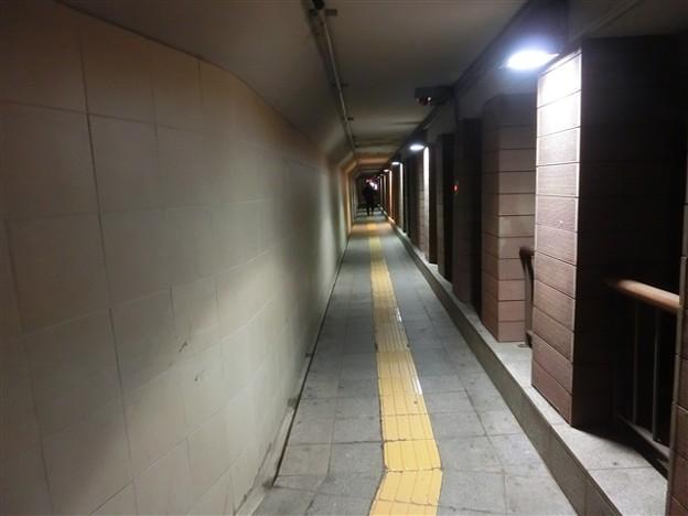 写真: ソウル317_R