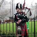 写真: スコットランドの楽器