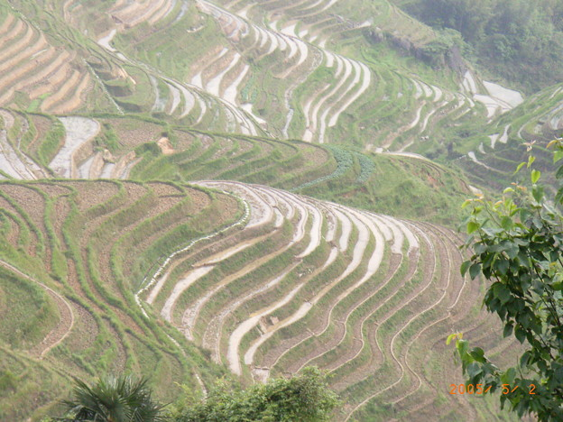 龍脊棚田(桂林)
