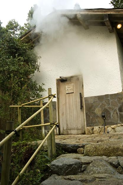イオン蒸し風呂 スチームサウナ