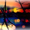 Illuminations of twilight..........