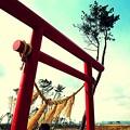 Photos: 錆びた鈴.......